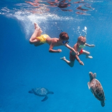 Barbados Blue Scuba Diving and Water sports